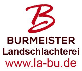 sponsor logo burmeister
