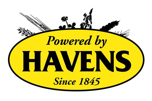 sponsor logo havens